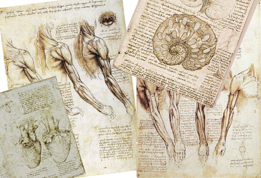 Carnet de Léonard de Vinci